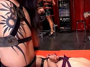 Gestrafte slaaf smeekt zijn dominatrix om genade